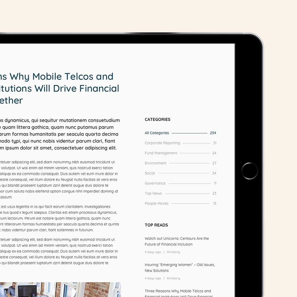 Audacious Investing responsive website design for internal blog page on iPad in landscape view